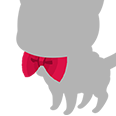 A-Red Bowtie.png