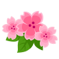 """The Cherry Blossom<span style=""""font-weight: normal"""">&#32;(<span class=""""t_nihongo_kanji"""" style=""""white-space:nowrap"""" lang=""""ja"""" xml:lang=""""ja"""">チェリーブロッサム</span><span class=""""t_nihongo_comma"""" style=""""display:none"""">,</span>&#32;<i>Cherī burossamu</i><span class=""""t_nihongo_help noprint""""><sup><span class=""""t_nihongo_icon"""" style=""""color: #00e; font: bold 80% sans-serif; text-decoration: none; padding: 0 .1em;"""">?</span></sup></span>)</span> of the 2016 Flower event."""