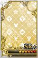 an empty SR+ Assist card