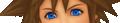 Sora Save Face KH3D.png
