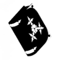 Zexion's Replica Data KHIIFM.png