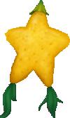 Paopu Fruit.png