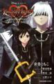 Kingdom Hearts 358-2 Days Novel 2.png