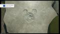 Lucky Emblem (Olympus) 02 KHIII.png